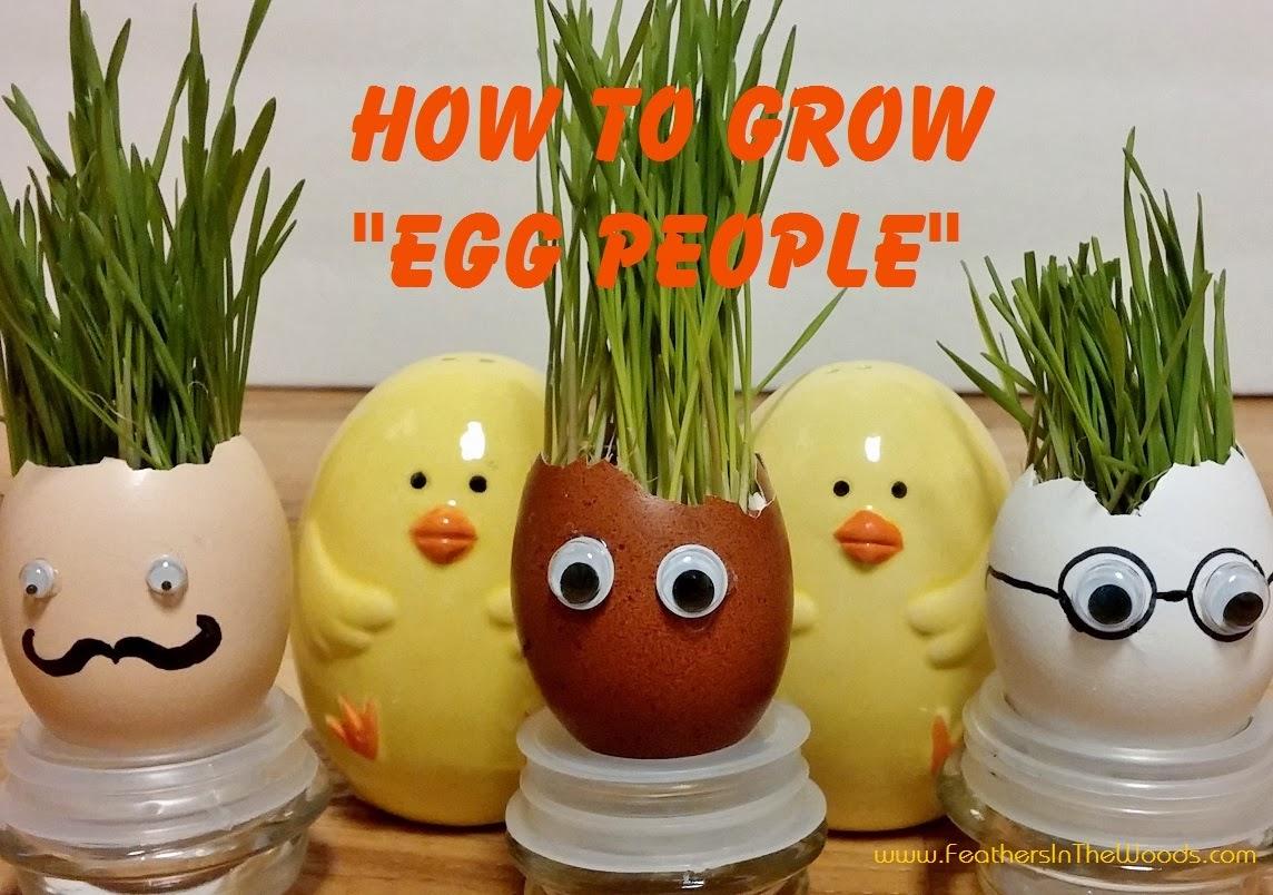 make egg shell people planters