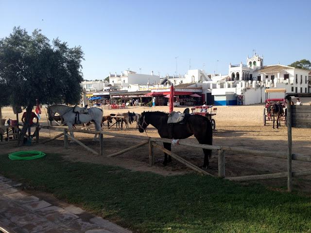 La Aldea de El Rocío y los caballos