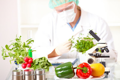 tech, What is the future of Food Technology, technology, technology today, latest technology, future of Food Technology, Food Technology, future tech news, ENTERTAINMENT, high technology, new technology,