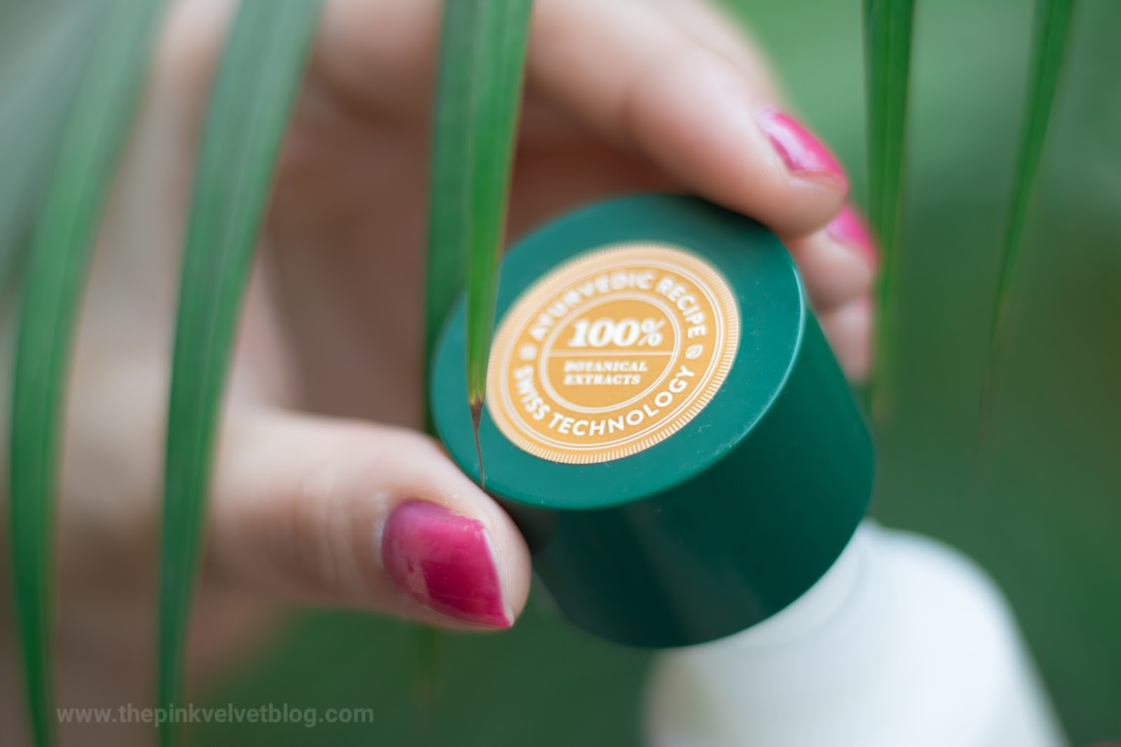 Biotique Aloe Vera Sunscreen SPF 30+ (For Oily Skin)