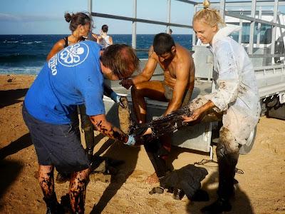 Vor Gran Canaria ist wieder Öl im Atlantik 01