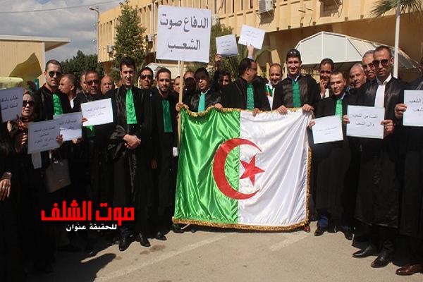 قضاة الشلف يلتحقون بالحراك الشعبي ويطالبون بإحترام الدستور
