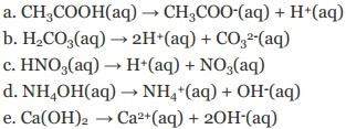 persamaan ionisasi kimia