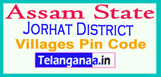 Jorhat District Pin Codes in Assam State