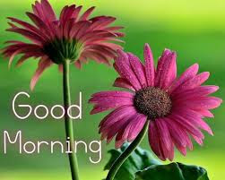 name-on-good-morning-flower-images-online