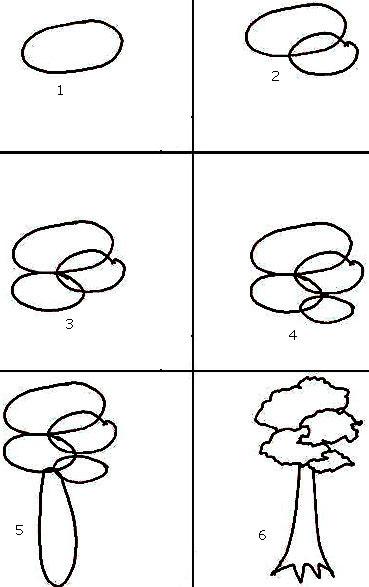 Cara menggambar pohon jati