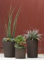 metodo-semplice-per-innaffiare-piante-incustodite
