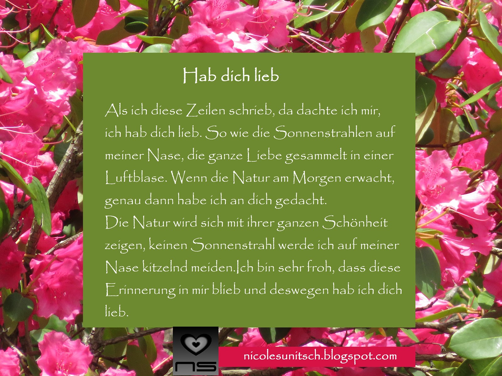 Gedichte von Nicole Sunitsch - Autorin : Hab dich lieb