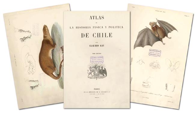 Resultado de imagen para ATLAS DE LA HISTORIA FÍSICA Y POLÍTICA DE CHILE
