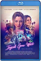 Ingrid Goes West (2017) HD 720p Latino