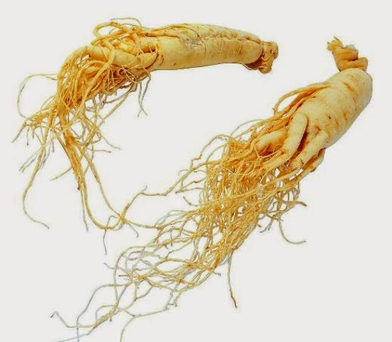What Are Herbs And Nutritional Supplements For Genital Herpes? 1