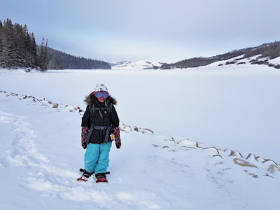 Reesor Lake, Cypress Hills Provincial Lake