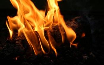 Wallpaper: Hot Embers and Wood Fire