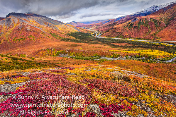 Protect Gates of the Arctic National Park & Preserve