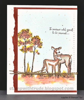 In the Meadow, Stampin' Up!, CASE, stamp with trude, greeting card