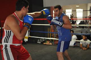الملاكمة والعضلات