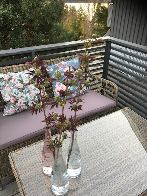 Rødhyll - vakker som barn, men etter det... - Rødhyll i vase ved sittegruppe IMG_5718-min