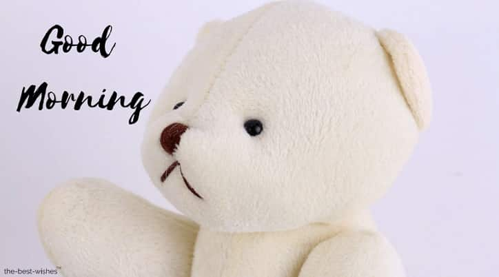 lovely teddy bear image