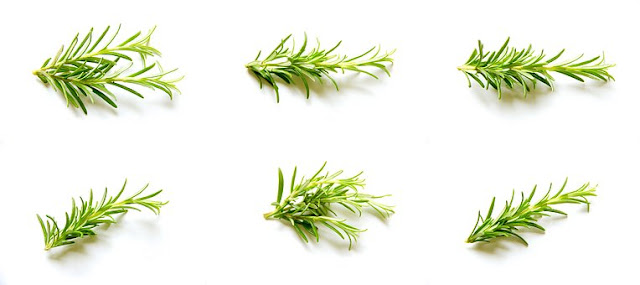 Rosemary