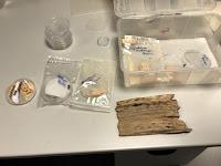 Probetas de muestra sometida a hongos y xilófagos