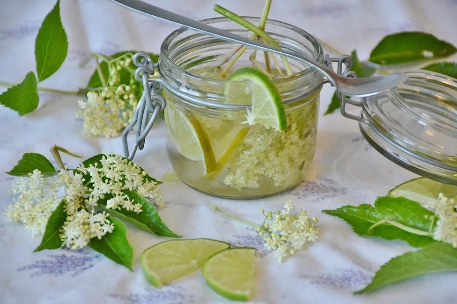 propiedades de limon
