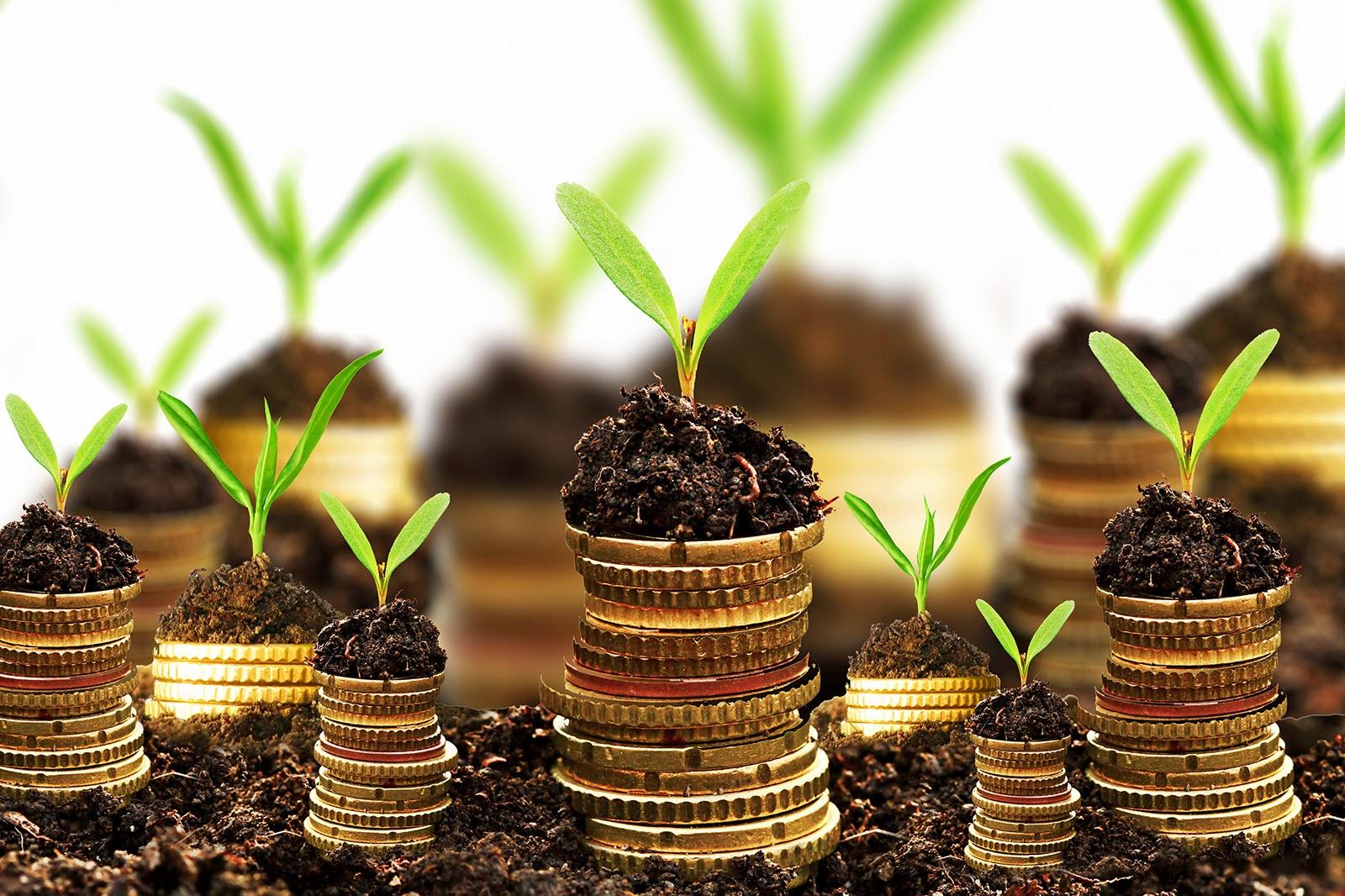 Gli investimenti migliori da fare su aziende