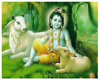 Krishna photo download