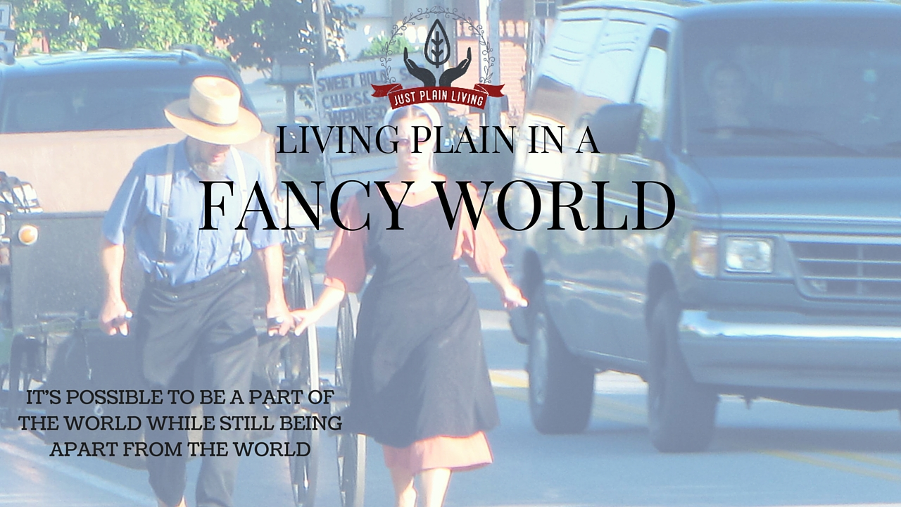Is it possible to part a part OF the world while still being apart FROM the world? Learn a little more about the Plain folks and how they live plain in a fancy world.