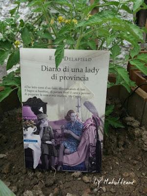 http://matutteame.blogspot.it/2017/06/em-delafield-diario-di-una-lady-di.html