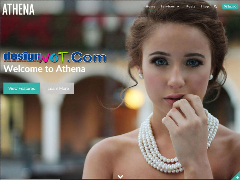 Athena Parallax Modern WordPress Theme