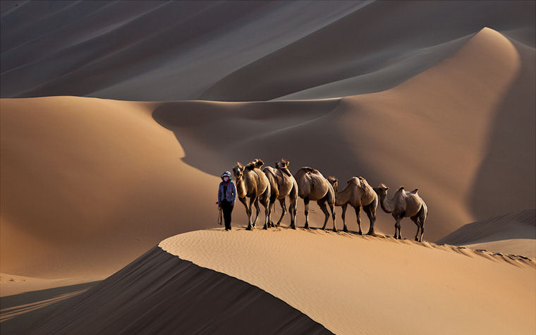 Camino por el desierto - Journey through the desert by Shin YongSang