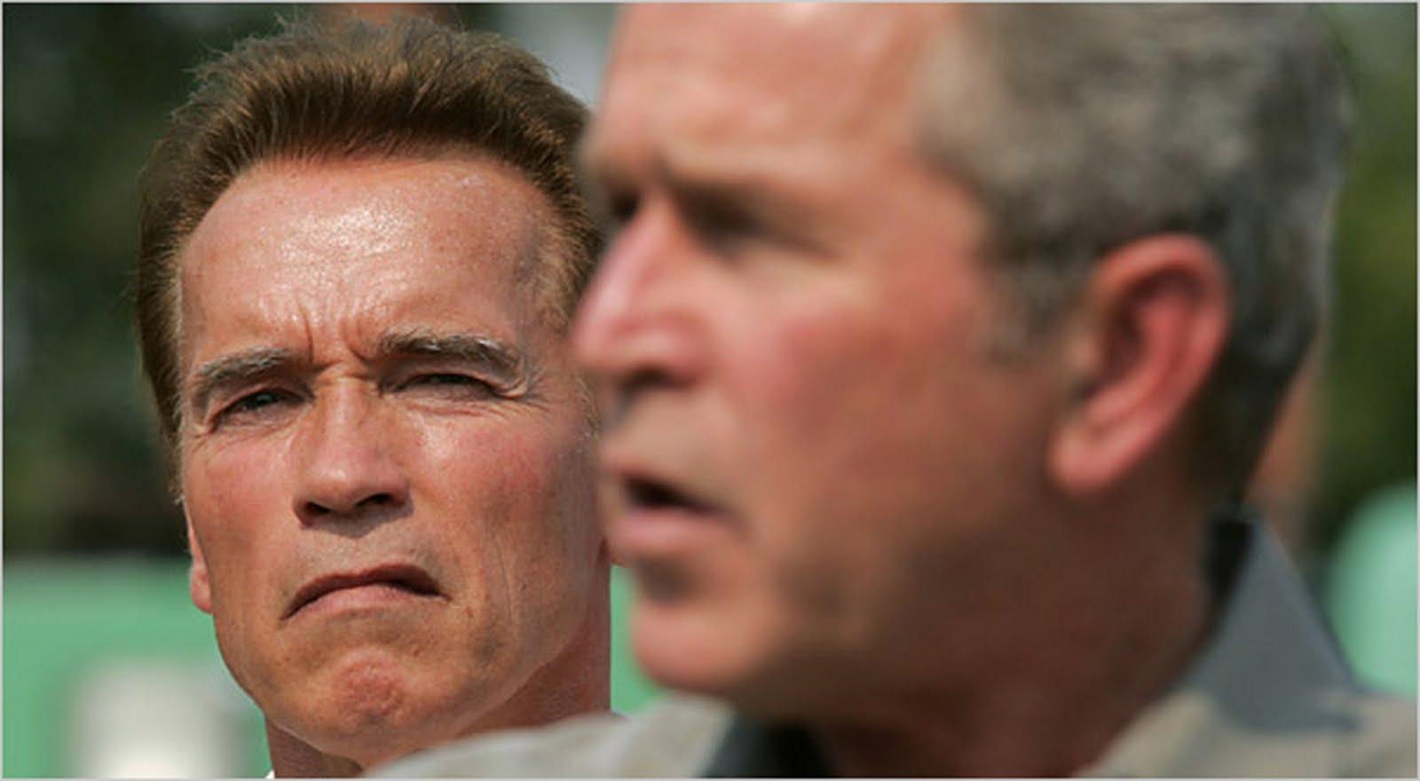 Tom Bush Vw >> Arnold Documentales: enero 2006