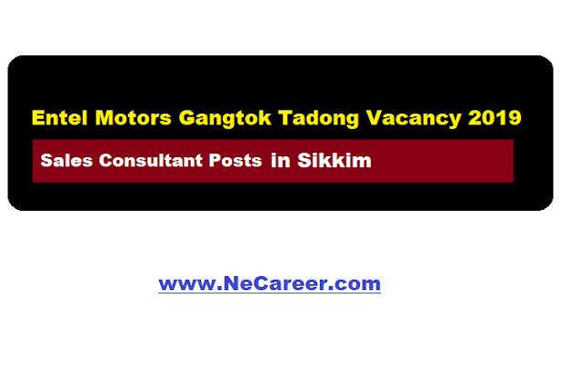 Entel Motors Gangtok Sikkim recruitment 2019 (May)