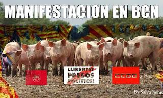 llibertat presos polítics, gorrinos, porcs, cerdos