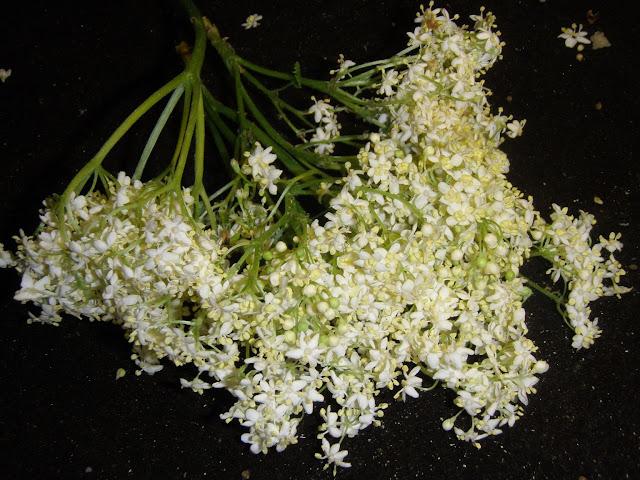 d%C5%BCem4 Dżem truskawkowy z kwiatami czarnego bzu
