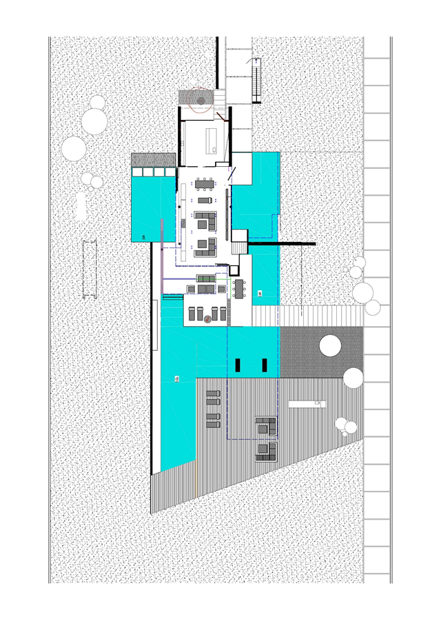 Site plan with modern home