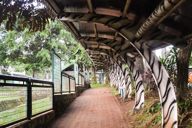 Zoo, Ragunan, Kebun Binatang di Jakarta Selatan