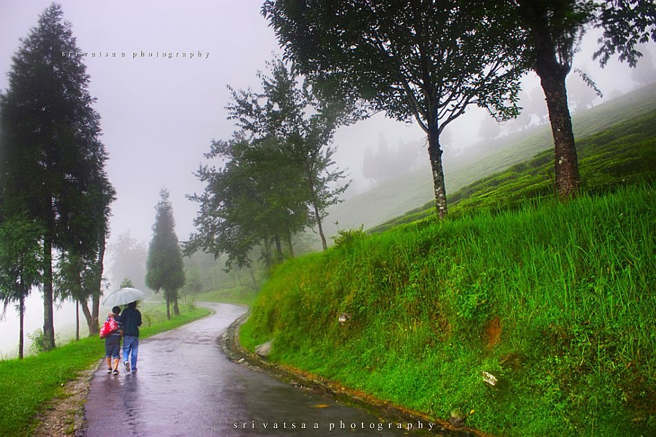 Hd Wallpaper Monsoon World At A Glance Images Monsoon Moods In Gangtok Sikkim
