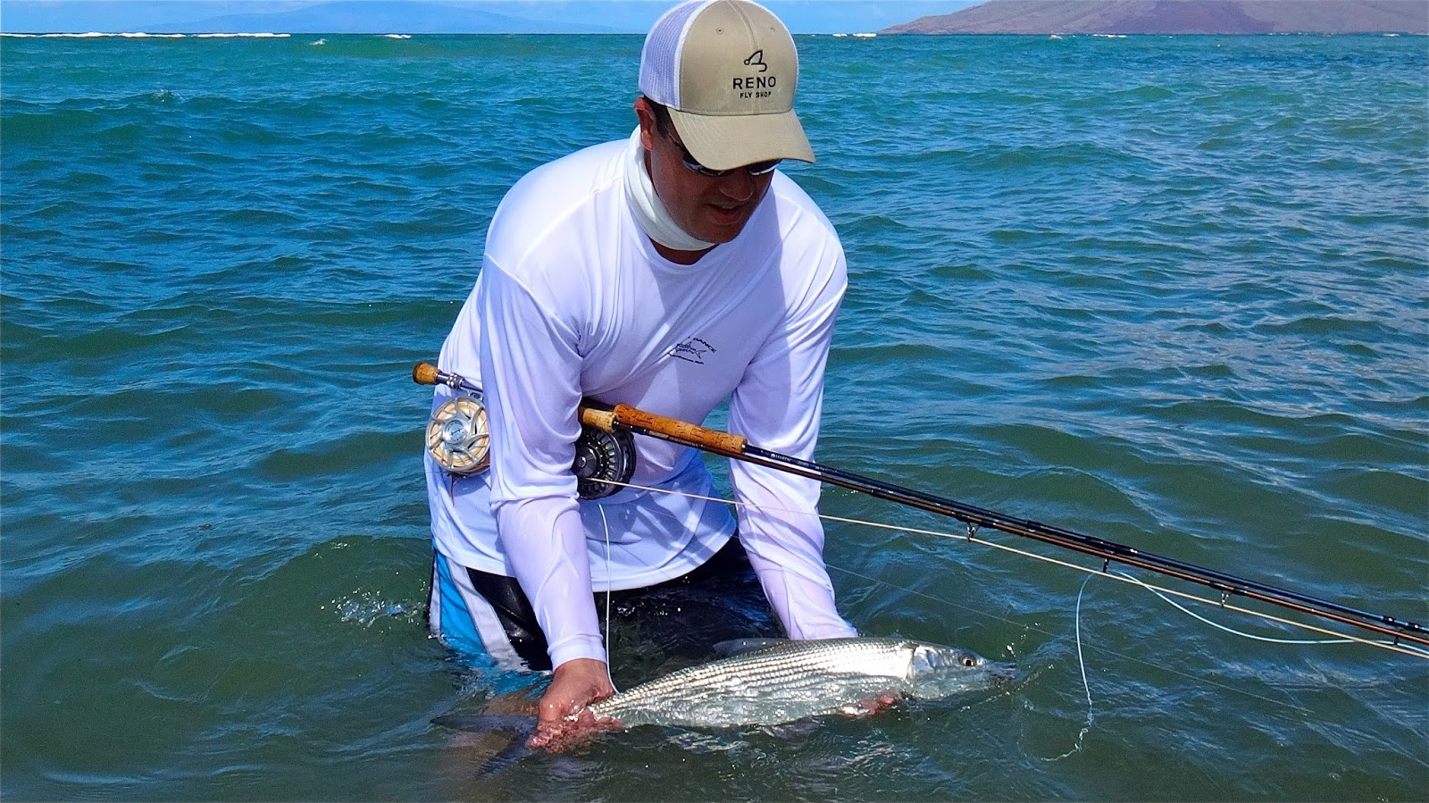 the fly syndicate big bones brah maui fly fishing