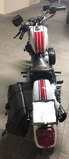 sportster 883 anniversario moto del pacciani back