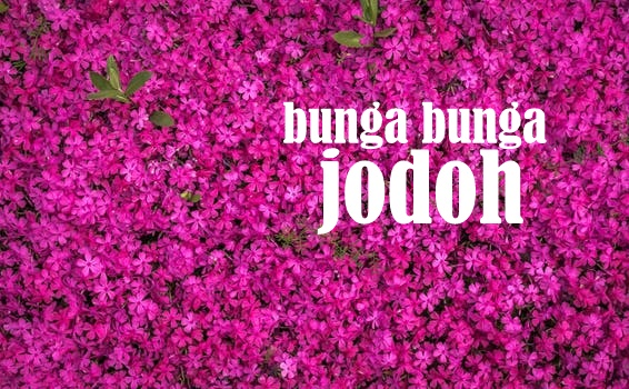 Drama Bunga-Bunga Jodoh; Fathia Latiff X Aiman Hakim Ridza