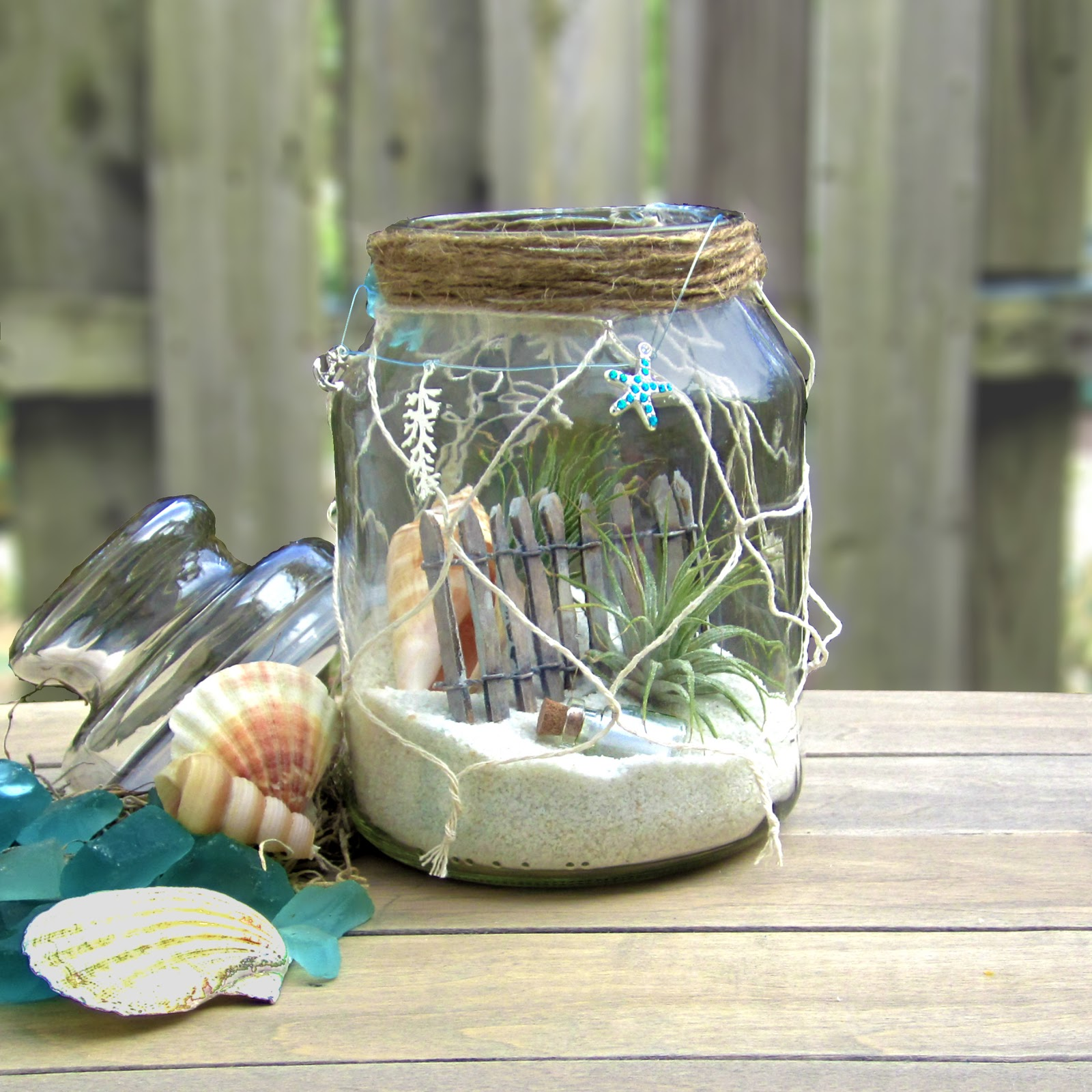 nautical coastal terrarium air plants tillandsia beach apothecary or mason jar