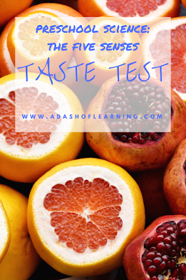 taste test (preschool science: the five senses)