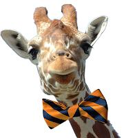 Would a giraffe wear a bow tie