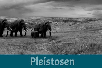 √ Pengertian Zaman Pleistosen dan Ciri-Ciri