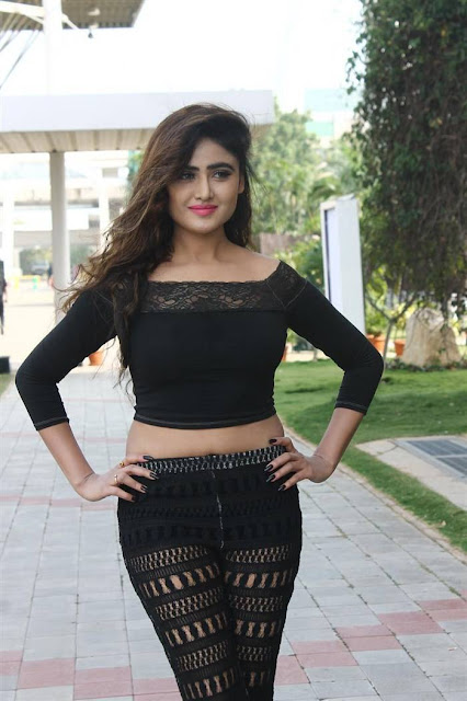 Sony Charishta Latest Hot Cleveage Black Transparent Dress PhotoShoot Images At Bakers Technology Fair 2016