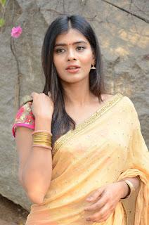 Actress Heba Patel Stills in Half Saree at Nenu Naa Boyfriends Movie Opening 0147