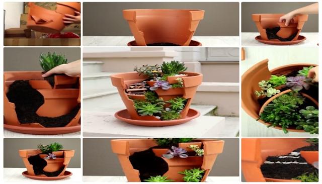 Elaboracion de micro jardin paso a paso