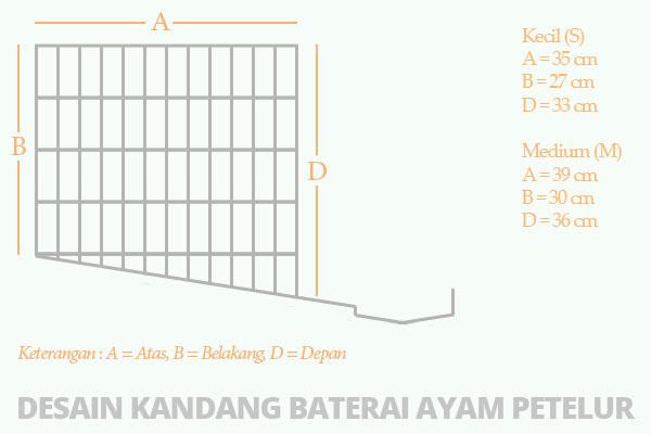 Desain Kandang Ayam Petelur Yang Sederhana - Cara Budidaya ...