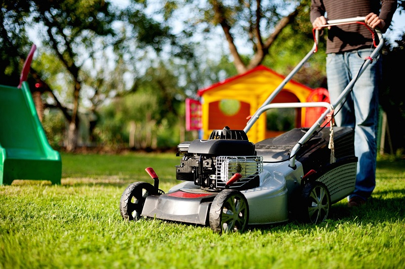Lawn  Maintain Professional
